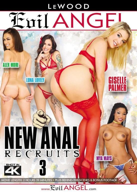 New Anal Recruits 3 (DVDRip/1.72 GiB)