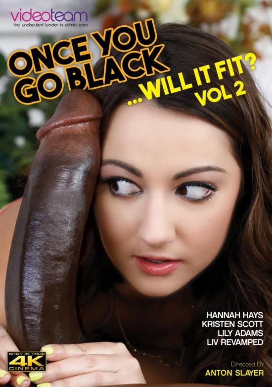 Once You Go Black - Will It Fit? 2 (WEBRip/HD/1.65 GiB)