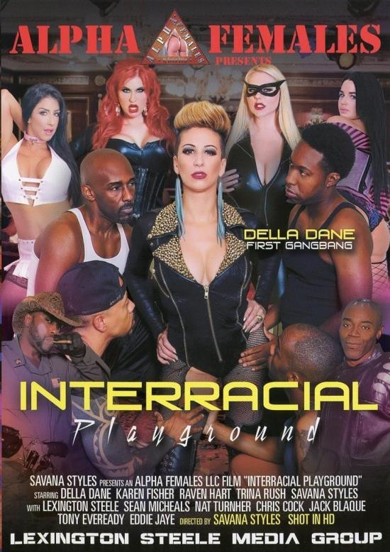 Interracial Playground (DVDRip/1.43 GiB)