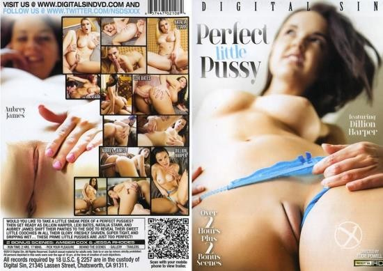 Perfect Little Pussy (HD/3.73 GB)