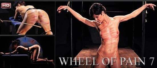 Mood-Pictures - Unknown - Wheel of Pain 7 (FullHD/1080p/1.64 GB)