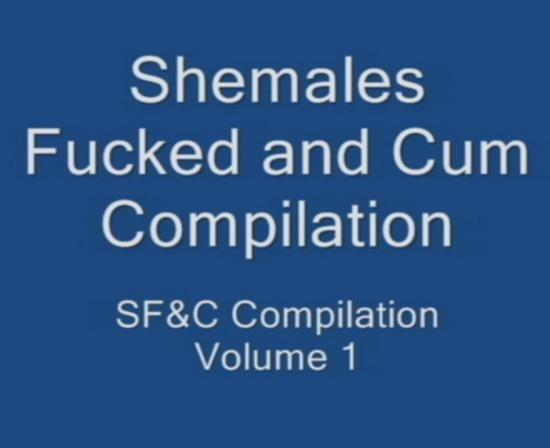 SHEMALE - ShemaleS - Shemales Fucked and Cum Compilation Volume 1 (HD/720p/1000 MB)