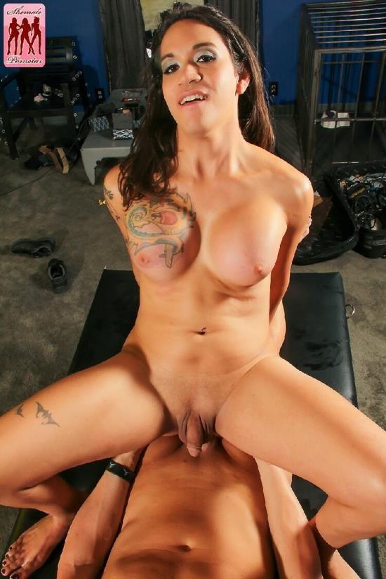 ShemalePornStar - Tori Mayes - Tori Mayes Gets A Massage! (HD/720p/772 MB)