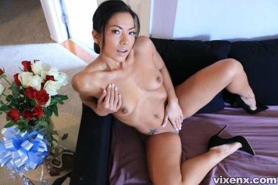 Vixenx - Morgan Lee - Youre going to jail (FullHD/1080p/2.55 GB)
