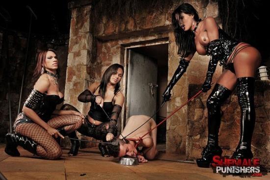 ShemalePunishers/TrannyPack - Mylla Pereira, Luciana Foxx, Thayla Andrade - Hardcore (HD/720p/487 MB)