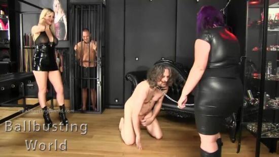 BallbustingWorldPpv - Nikki, Cindy - Ballbusting: Putting Him Down For 20 Seconds Bb1402 (FullHD/1080p/349 MB)