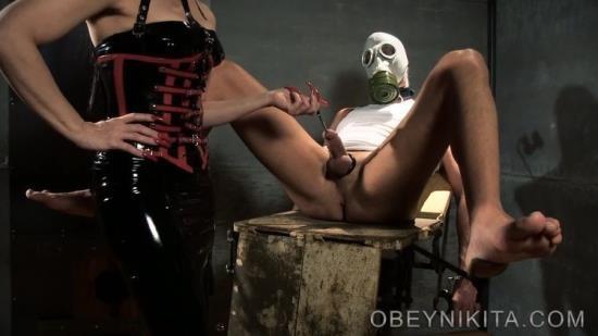 MistressNikitaFemdomVideos - Obey Nikita - Probing My Subject (FullHD/1080p/873 MB)