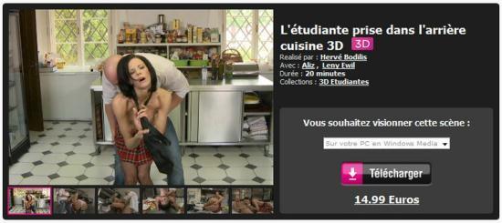 Dorcelvision - Aliz, Leny Ewil - L'etudiante prise dans l'arriere cuisine 3D (FullHD/1080p/1.82 GB)
