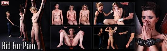 Mood-Pictures - UNKNOWN - Bid for Pain (HD/720p/801 MB)