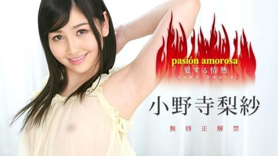 Caribbeancom - Risa Onodera - Passion to Love 5 (FullHD/1080p/1.77 GB)