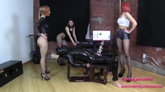 BratPrincess2 - Alexa Amadahy And Lola - Cow Teased During Erection Removal Part 2 (FullHD/1080p/781 MB)