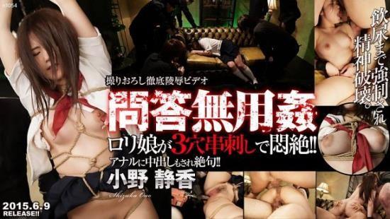 Tokyo-Hot - Shizuka Ono - 3Holes Hard Fuck (HD/720p/2.97 GB)