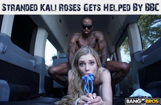 MonstersofCock/BangBros - Kali Roses - Stranded Kali Roses Gets Helped By BBC (HD/720p/1.27 GB)