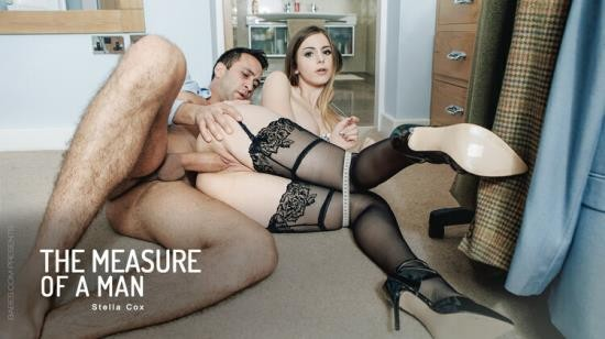 OfficeObsession/Babes - Stella Cox - The Measure of a Man (HD/720p/660 MB)