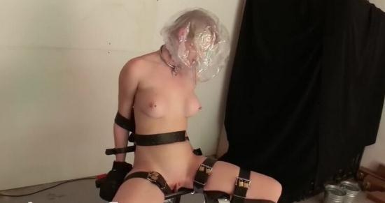 Bondagelife - Rachel Greyhound, Sasha Darling - Damon haircut (HD/720p/578 MB)