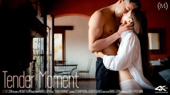 SexArt/MetArt - Stefany Moon, Alberto Blanco - Tender Moment (FullHD/1080p/1.37 GB)