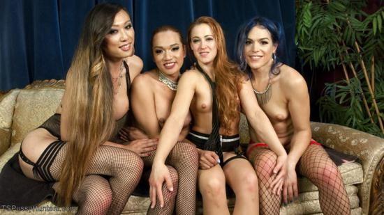 TSPussyHunters/Kink - Jessica Fox, Cheyenne Jewel, Kelli Lox, Venus Lux - Cheyenne Jewel's first TS gang bang!! (HD/720p/1.48 GB)