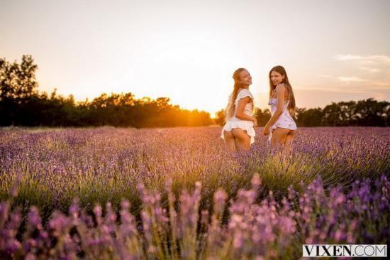Vixen - Naomi Swann, Talia Mint - Our Secret Place (FullHD/1080p/3.50 GB)