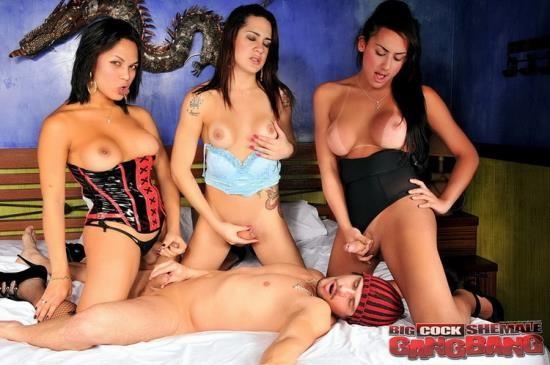BigCockShemaleGangbang/TrannyAccess - Juliana Souza, Patricia Andrade, Shayara Hugarte - Hardcore (FullHD/1080p/1.22 GB)
