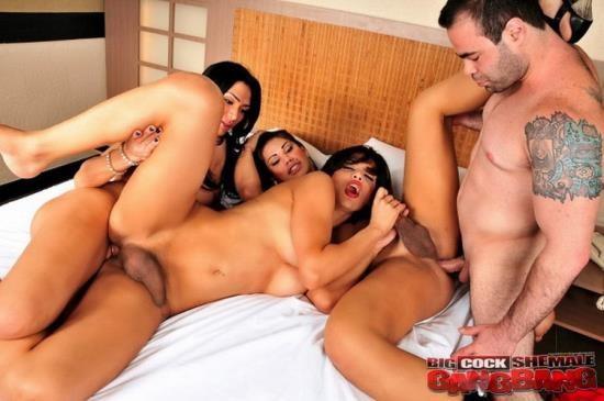 BigCockShemaleGangbang - Cassia Carvalho, Cybelli Calmon, Thayna Louzada - Hardcore (FullHD/1080p/1.23 GB)