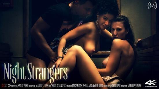 SexArt/MetArt - Emylia Argan, Stacy Bloom - Night Strangers (FullHD/1080p/1.54 GB)