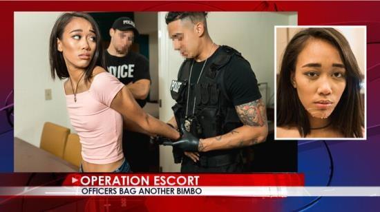OperationEscort - Aria Skye - Officers Bag Another Bimbo (FullHD/1080p/2.15 GB)