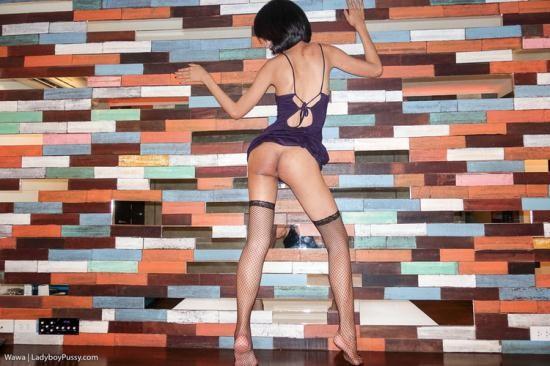 LadyboyPussy - Wawa - GF Dress and Creampie (HD/720p/908 MB)